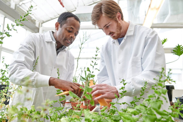 People in lab with plants